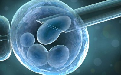 Time for a bigger spotlight on rogue fertility clinics