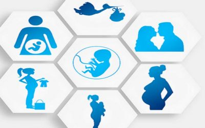 UN report warns against all forms of surrogacy