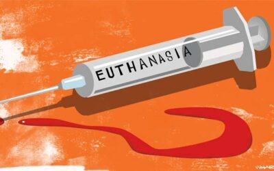 Submission on the euthanasia Bill