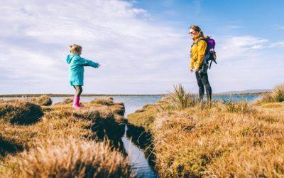 Ireland's rising number of divorces will harm children