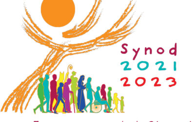 Webinar: What should we expect from the Synod?